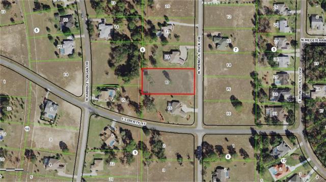1076 N Spend A Buck Drive, Hernando, FL 34442 (MLS #781952) :: Plantation Realty Inc.