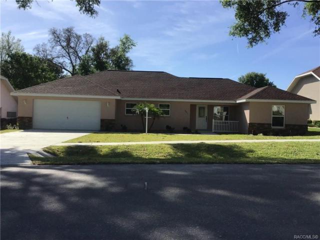 6421 N Misty Oak Terrace, Beverly Hills, FL 34465 (MLS #781969) :: Plantation Realty Inc.