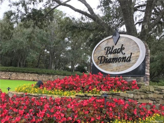2960 W Plantation Pines Court, Lecanto, FL 34461 (MLS #782002) :: Pristine Properties