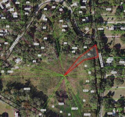 7302 S Baker Avenue, Floral City, FL 34436 (MLS #782008) :: Plantation Realty Inc.
