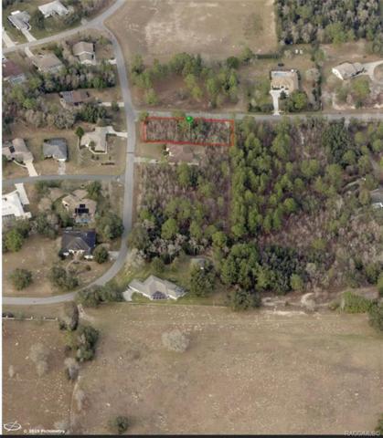 1868 E Allegrie Drive, Inverness, FL 34453 (MLS #782050) :: Plantation Realty Inc.