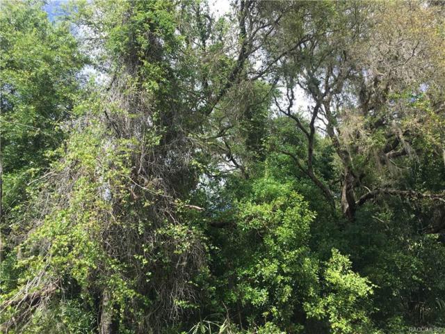 2730 S Cromwell Path, Inverness, FL 34450 (MLS #782076) :: Plantation Realty Inc.