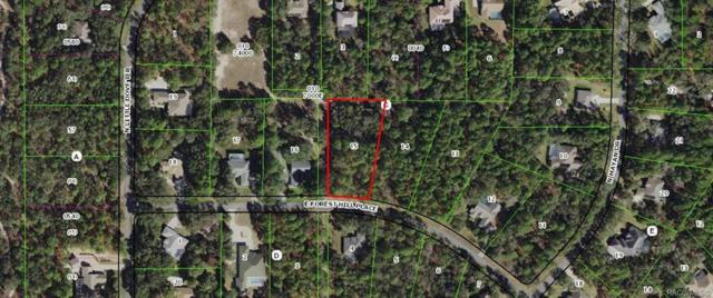 697 E Foresthill Place, Hernando, FL 34442 (MLS #782106) :: Plantation Realty Inc.