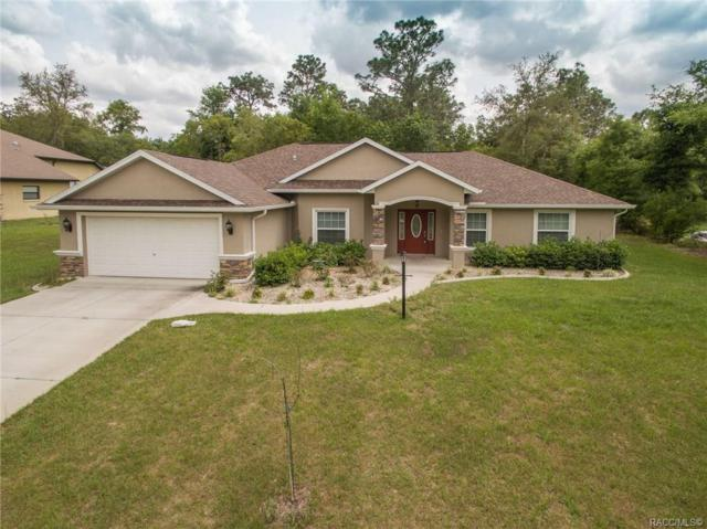 2774 E Marcia Street, Inverness, FL 34453 (MLS #782140) :: Plantation Realty Inc.