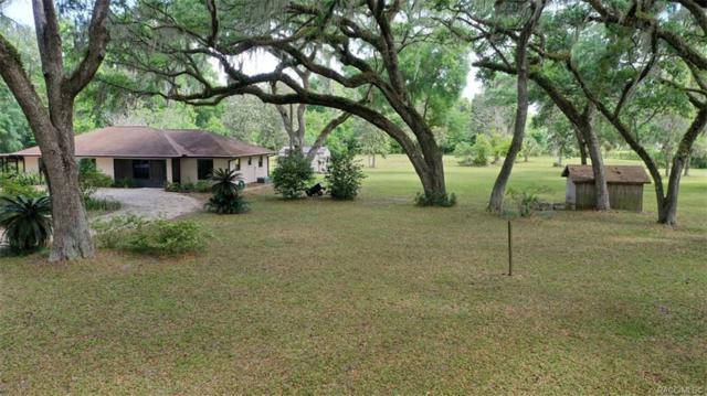 10999 E Bushnell Road, Floral City, FL 34436 (MLS #782144) :: Plantation Realty Inc.