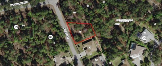 3 Statice Court, Homosassa, FL 34446 (MLS #782163) :: Pristine Properties