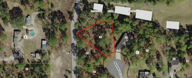 6 Barkwood Point, Homosassa, FL 34446 (MLS #782164) :: Plantation Realty Inc.
