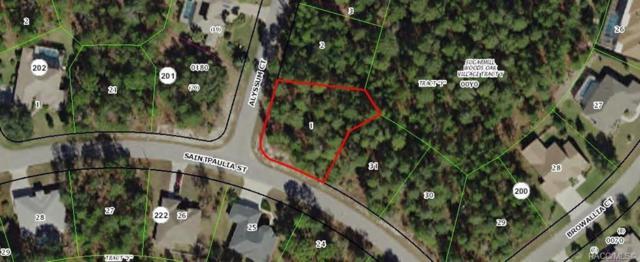 2 Alyssum Court, Homosassa, FL 34446 (MLS #782167) :: Pristine Properties