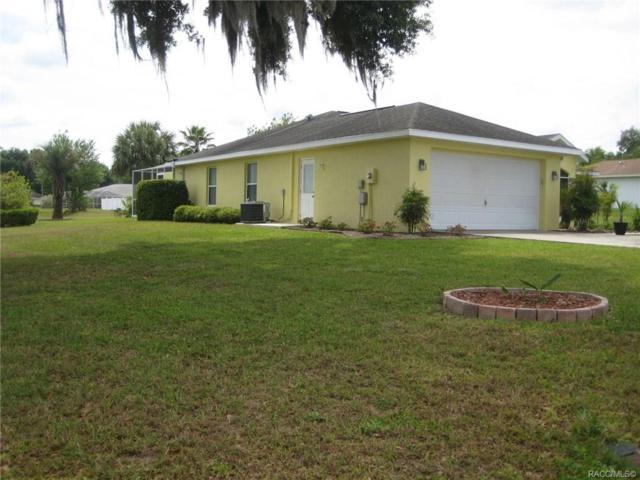 4602 E Van Ness Road, Hernando, FL 34442 (MLS #782181) :: Plantation Realty Inc.