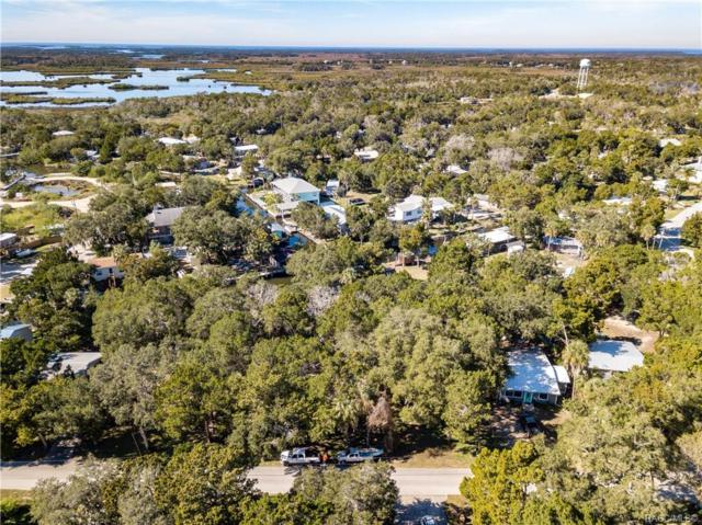 2310 S Waterman Drive, Crystal River, FL 34429 (MLS #782191) :: Pristine Properties