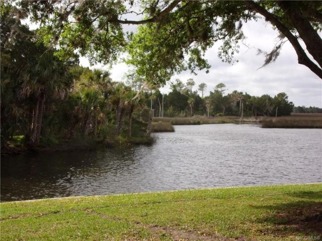 11384 W Bayshore #46 Drive, Crystal River, FL 34429 (MLS #782205) :: Plantation Realty Inc.