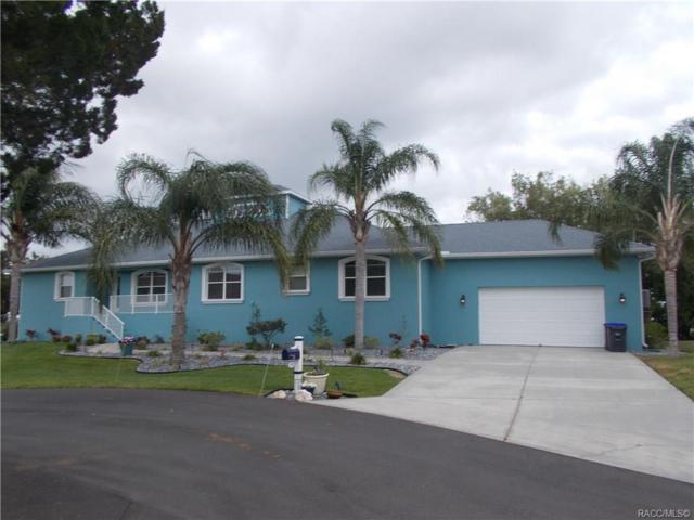 11905 W Sunnybrook Court #84, Crystal River, FL 34429 (MLS #782226) :: Plantation Realty Inc.