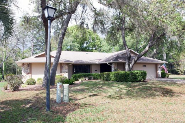 13 Asters Court, Homosassa, FL 34446 (MLS #782250) :: Plantation Realty Inc.