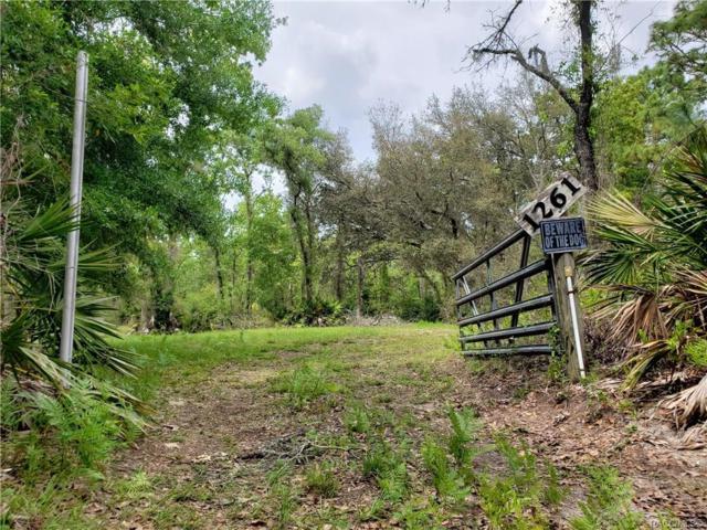 1261 N Groveland Way, Crystal River, FL 34429 (MLS #782251) :: Plantation Realty Inc.
