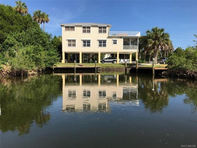 515 N Lake Circle, Crystal River, FL 34429 (MLS #782256) :: Plantation Realty Inc.