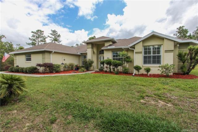 7031 N Damascus Avenue, Dunnellon, FL 34433 (MLS #782257) :: Plantation Realty Inc.