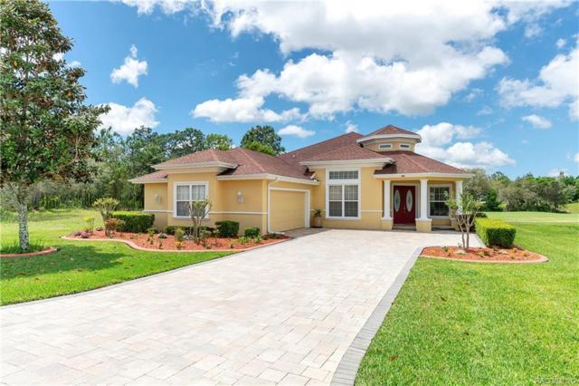 40 Woodfield Circle, Homosassa, FL 34446 (MLS #782275) :: Plantation Realty Inc.