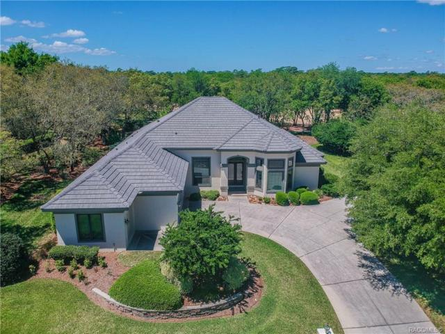 2624 N Prestwick Way, Lecanto, FL 34461 (MLS #782300) :: Pristine Properties