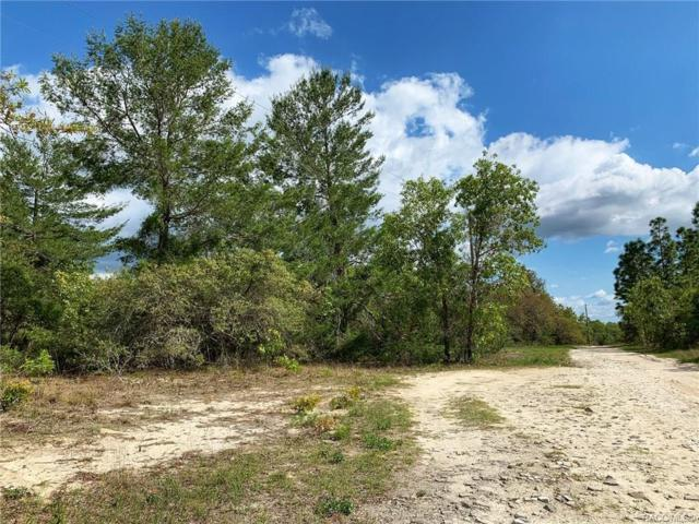 9225 N Peewee Point, Dunnellon, FL 34433 (MLS #782310) :: Pristine Properties