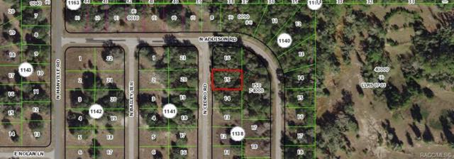 7931 N Cedro Road, Citrus Springs, FL 34434 (MLS #782336) :: Plantation Realty Inc.