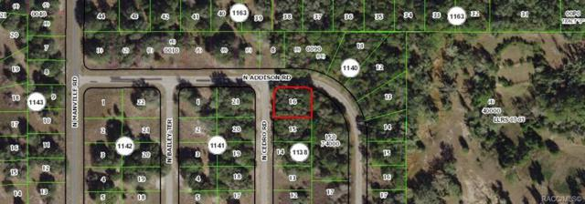 7947 N Cedro Road, Citrus Springs, FL 34434 (MLS #782337) :: Plantation Realty Inc.