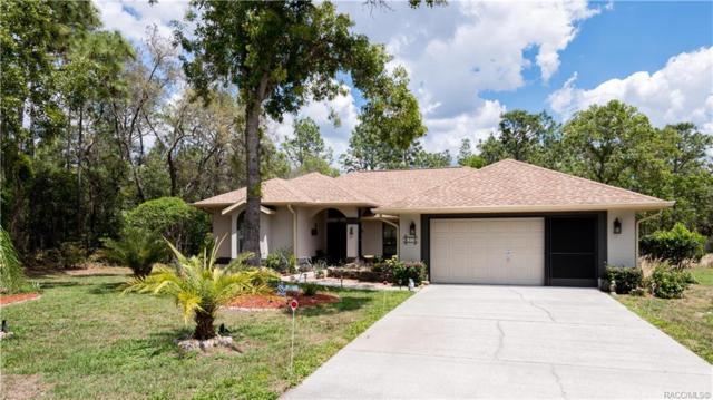 20 Pawpaw Court S, Homosassa, FL 34446 (MLS #782338) :: Plantation Realty Inc.