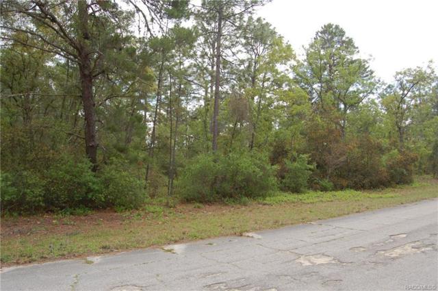 4076 W Vicksburg Drive, Citrus Springs, FL 34433 (MLS #782342) :: Plantation Realty Inc.