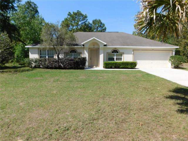 7218 N Freeport Circle, Citrus Springs, FL 34434 (MLS #782343) :: Plantation Realty Inc.