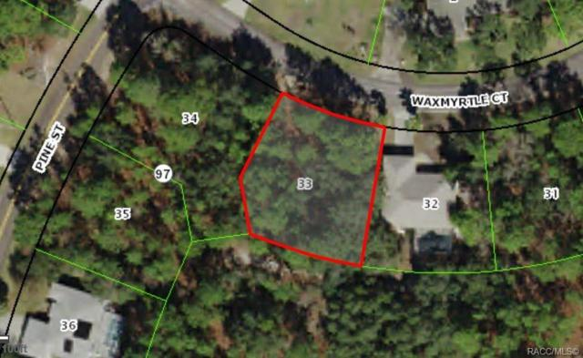 3 Waxmyrtle Court, Homosassa, FL 34446 (MLS #782360) :: Plantation Realty Inc.