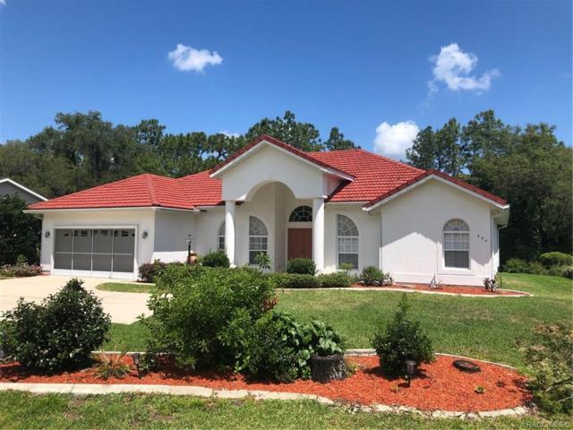 824 N Lafayette Way, Inverness, FL 34453 (MLS #782363) :: Plantation Realty Inc.