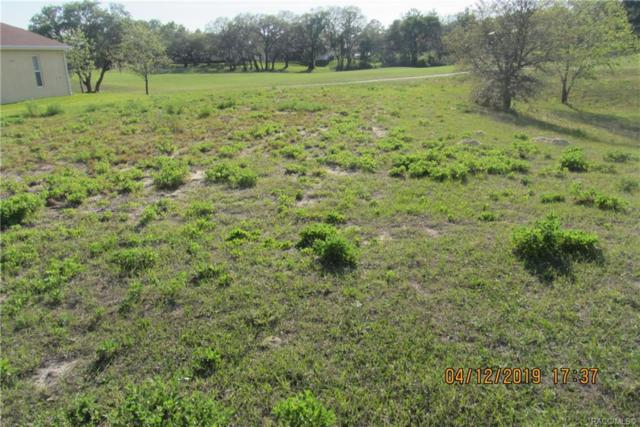 42 Woodfield Circle, Homosassa, FL 34446 (MLS #782378) :: Plantation Realty Inc.