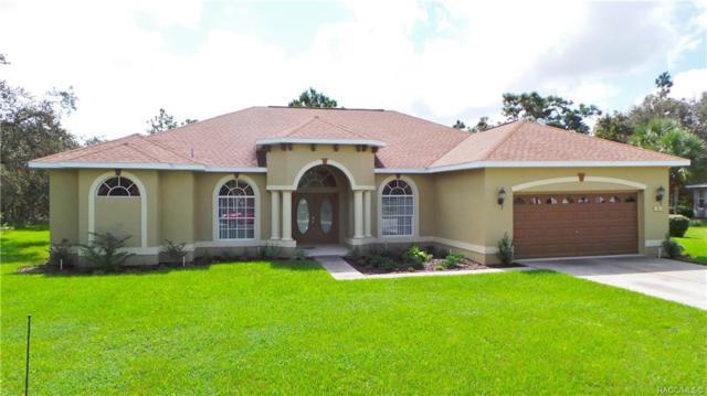 8 Ipomoea Court, Homosassa, FL 34446 (MLS #782380) :: Plantation Realty Inc.