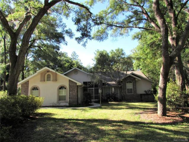 7983 SW 186th Circle, Dunnellon, FL 34432 (MLS #782386) :: Plantation Realty Inc.