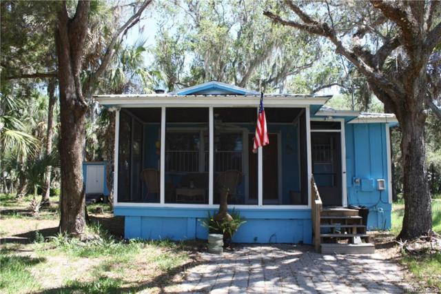 14335 W Seashell Court, Crystal River, FL 34429 (MLS #782399) :: Plantation Realty Inc.