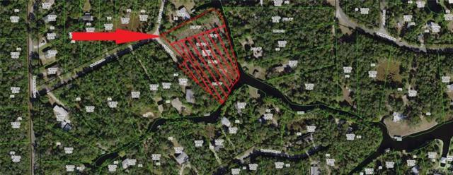 6223 S Pole Point, Homosassa, FL 34448 (MLS #782401) :: Plantation Realty Inc.