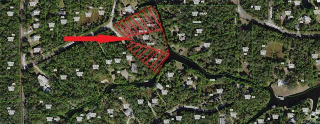 6249 S Pole Point, Homosassa, FL 34448 (MLS #782407) :: Plantation Realty Inc.