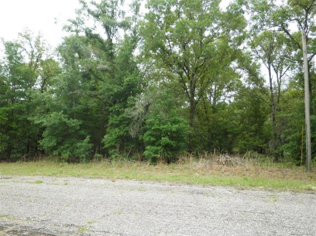 1648 W Crane Lane, Citrus Springs, FL 34434 (MLS #782423) :: Plantation Realty Inc.