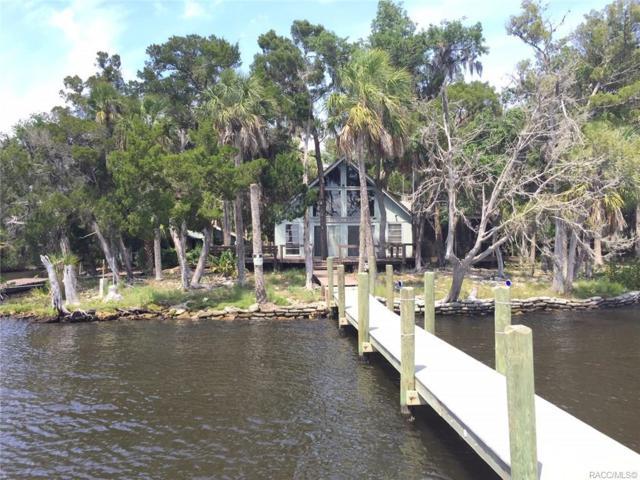 12799 The Homosassa River, Homosassa, FL 34448 (MLS #782425) :: Plantation Realty Inc.