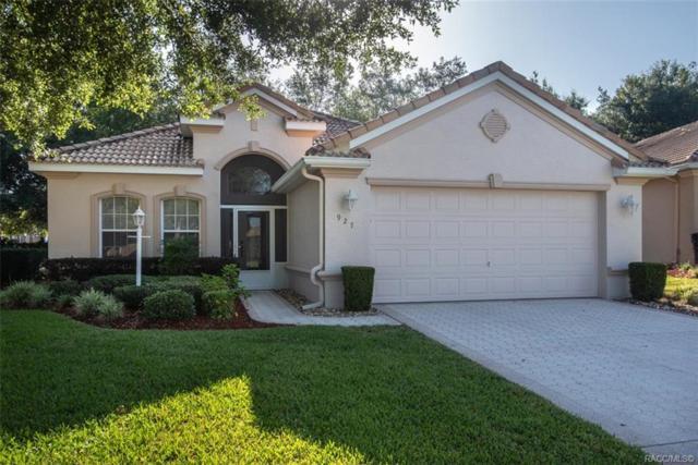 927 W Skyview Crossing Drive, Hernando, FL 34442 (MLS #782427) :: Pristine Properties