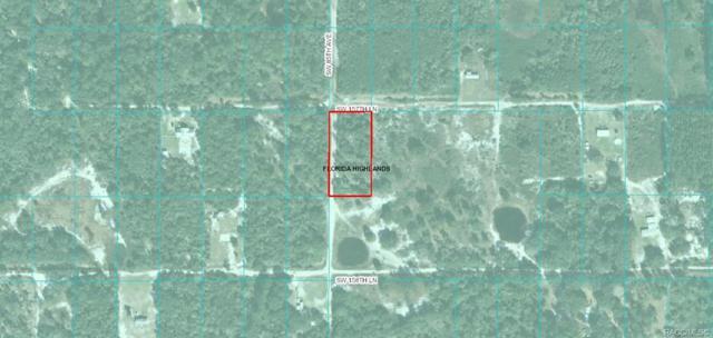 00 SW 157 Lane, Dunnellon, FL 34432 (MLS #782430) :: Plantation Realty Inc.