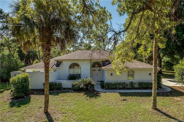 6115 N Peardale Terrace, Beverly Hills, FL 34465 (MLS #782437) :: Plantation Realty Inc.
