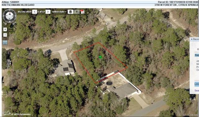 3798 W Forest Drive, Citrus Springs, FL 34433 (MLS #782440) :: Plantation Realty Inc.