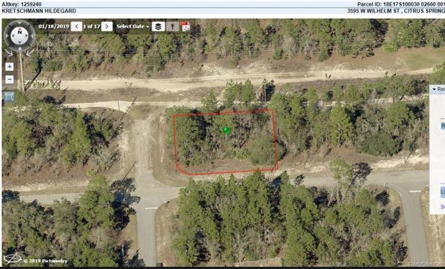 3595 W Wilhelm Street, Citrus Springs, FL 34433 (MLS #782443) :: Plantation Realty Inc.