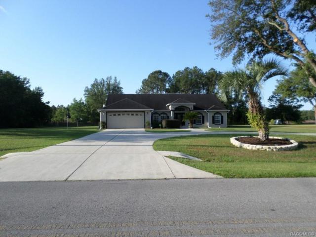 20370 SW Beach Boulevard, Dunnellon, FL 34431 (MLS #782452) :: Plantation Realty Inc.