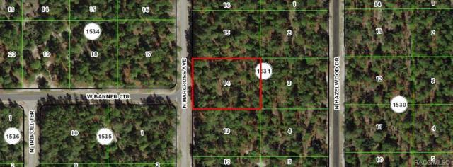 6709 N Harcross Avenue, Citrus Springs, FL 34433 (MLS #782454) :: Plantation Realty Inc.