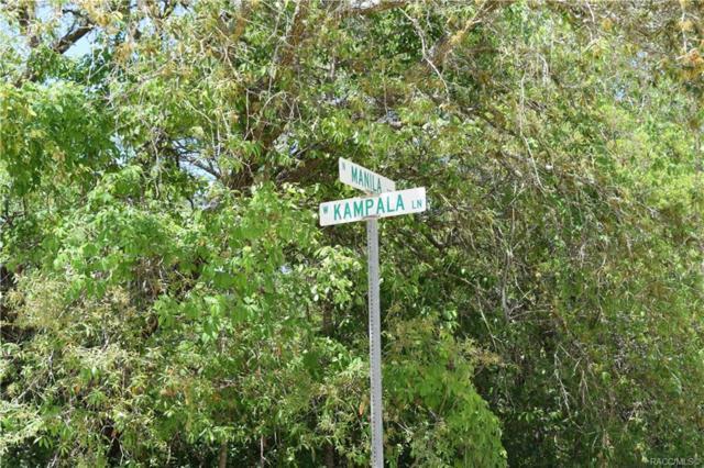 6183 W Kampala Lane, Dunnellon, FL 34433 (MLS #782457) :: Plantation Realty Inc.