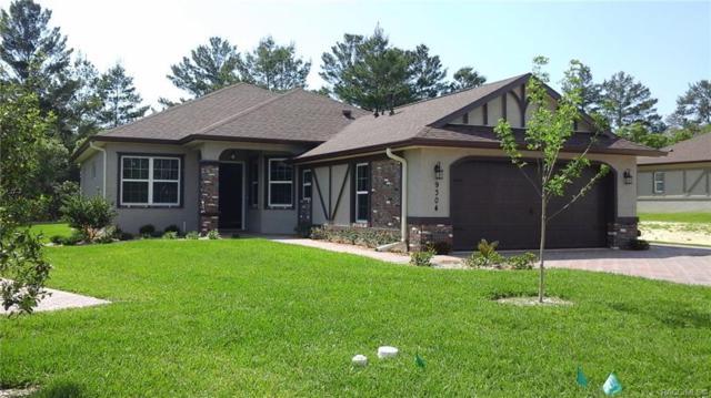 9304 S Deer Park Drive, Homosassa, FL 34446 (MLS #782458) :: Plantation Realty Inc.
