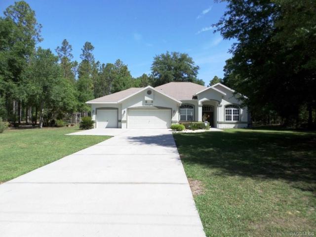 20299 SW 54th Street, Dunnellon, FL 34431 (MLS #782462) :: Plantation Realty Inc.