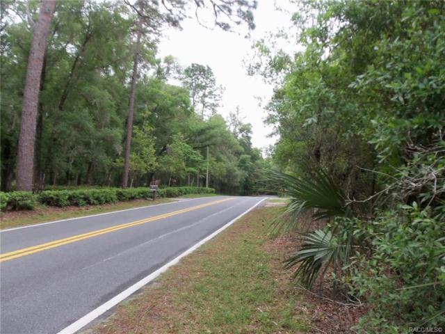 12166 N Elkcam Boulevard, Dunnellon, FL 34433 (MLS #782466) :: Plantation Realty Inc.
