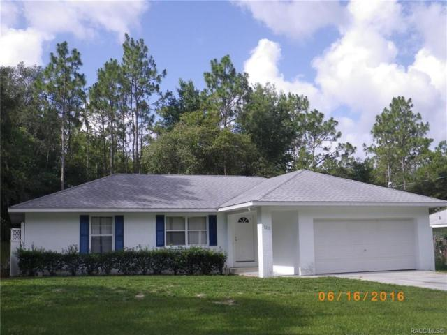3210 E Davis Lane, Inverness, FL 34453 (MLS #782469) :: Plantation Realty Inc.
